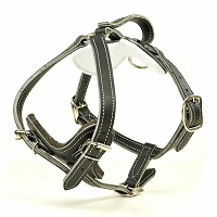 RedLine K9 Premium Leather Quick Release Protection and Tracking Harness