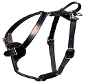 Discontinued: Padded Leather Quick Release Protection and Tracking Harness