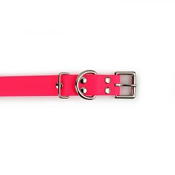 Einstein 3/4 Biothane Buckle Collars