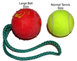 Bundle of 10 Herm Sprenger Large Rubber Balls with Rope Handle
