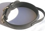 "2"" Heavy All Weather Collar with Handle"