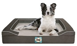 Sealy Dog Beds - Quad Layer - Medium - - shipping only in continental USA
