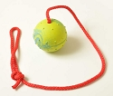 Bundle of 10 EURO Large Rubber Balls with Rope Handle