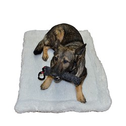Double Sided Sherpa Dog Bed - 2 Layers