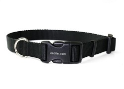 "Educator 1"" Durable Quick Snap Nylon Collar"