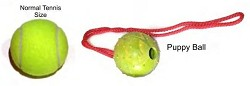 RedLine K9 Small PUPPY EURO Rubber Ball - Color May Vary